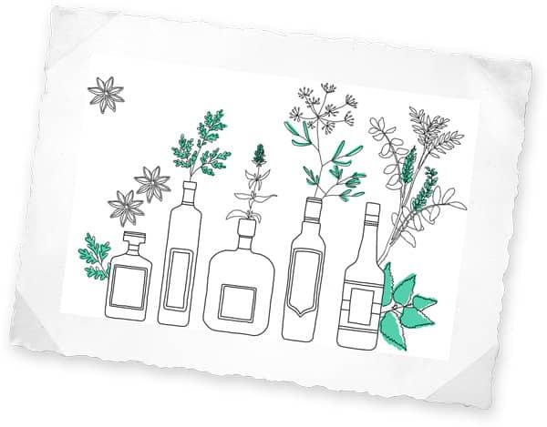 Les différentes saveurs de l'absinthe