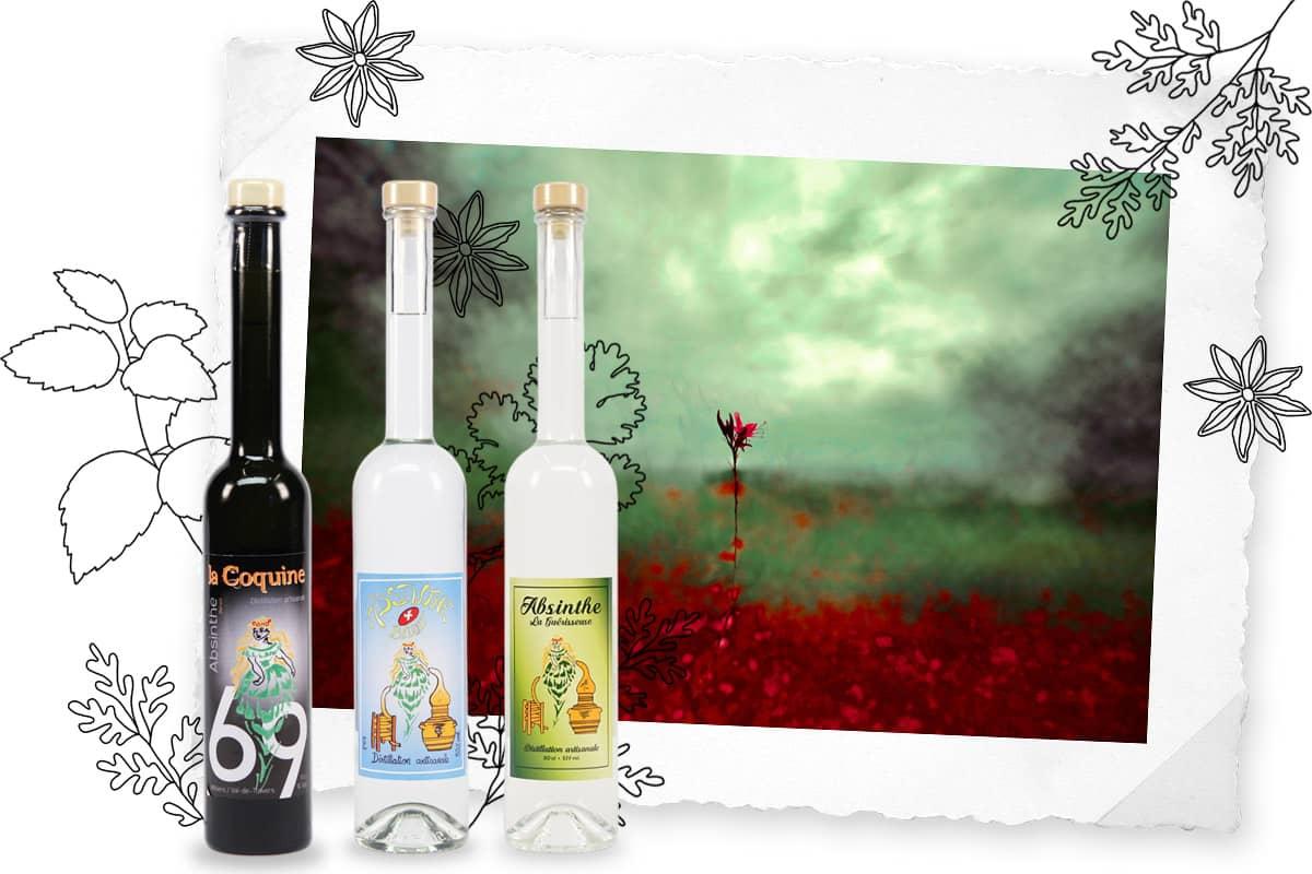 Distillerie d'absinthe Derrière les Jardins, Yves Benoit