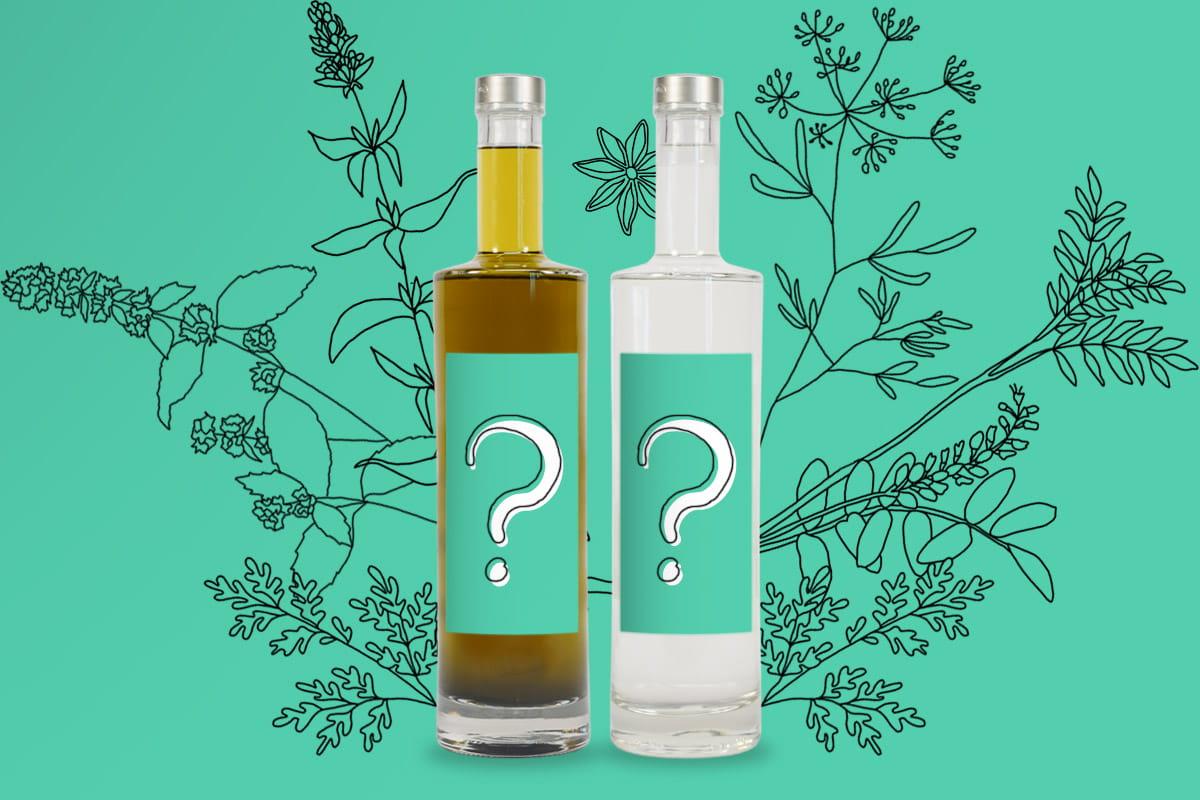10 astuces pour choisir son absinthe