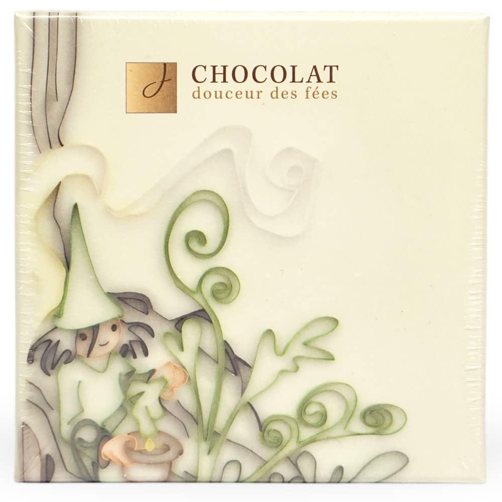 Chocolat à l'absinthe Douceur des Fées (9 pièces)